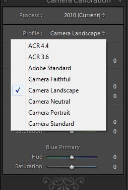 Camera Calibration – RAW