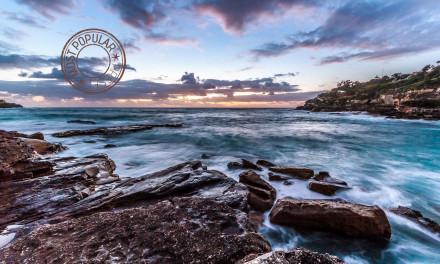 It's Official – Punchy HDR Preset is Most Popular
