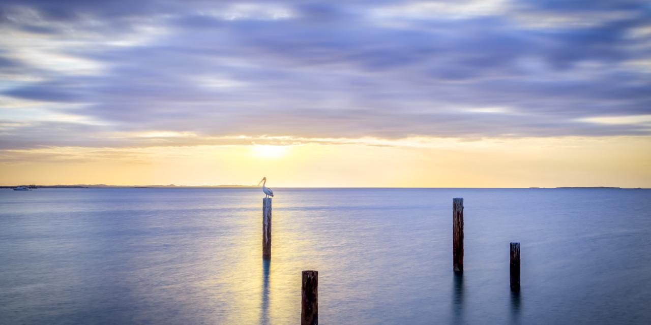 John Graham Reserve Pier, Perth WA