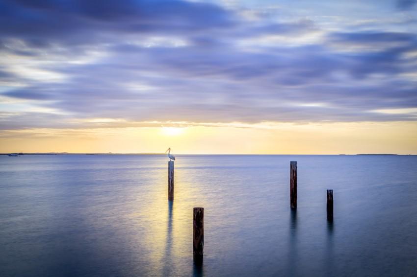 John Graham Reserve Pier