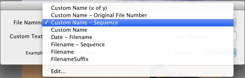 Lightoom File Naming Selection