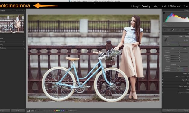 Get your Identity Plate back in Lightroom
