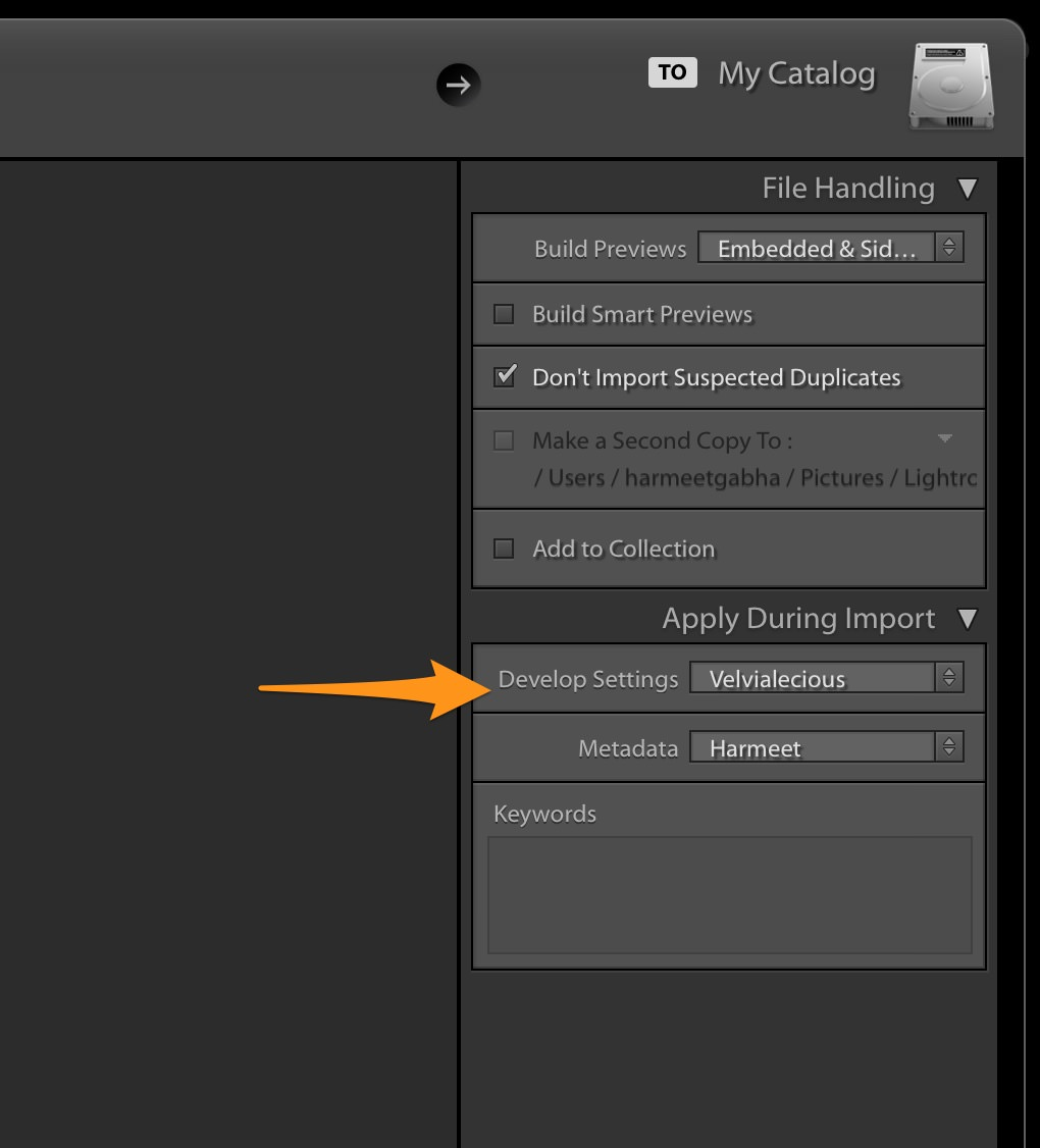 Apply During Import - Develop Settings