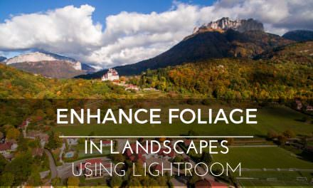 Enhance Foliage in Landscapes using Lightroom