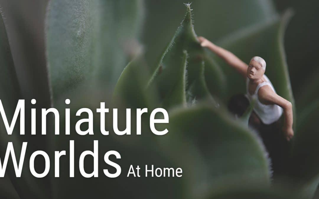 Miniature Worlds – Project #3